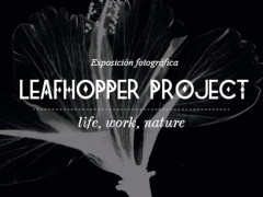 "Exposición "" Leafhopper Project """