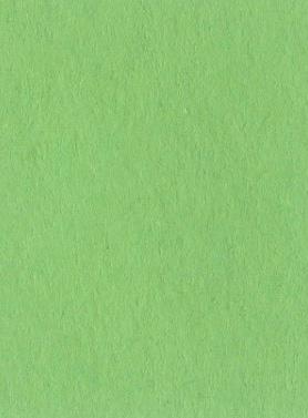Chromakey-Gr Lastolite